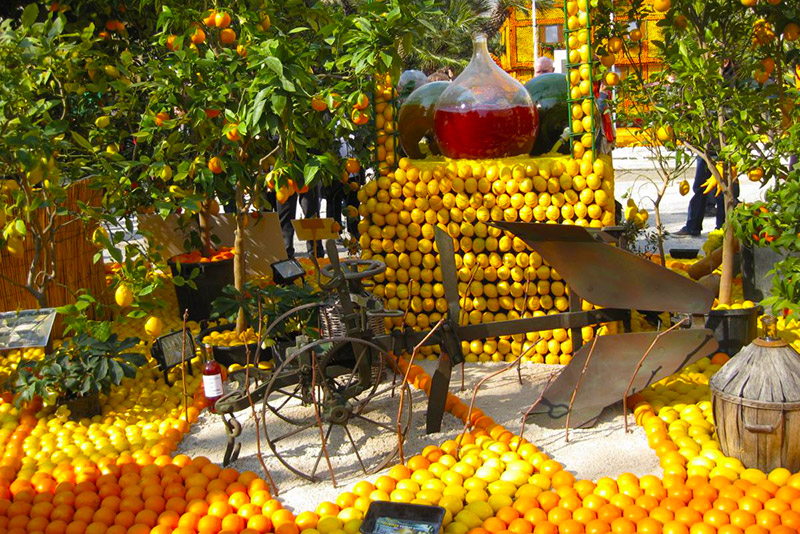 Лимонные композиции - фестиваль лимонов во Франции