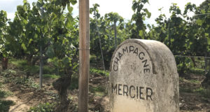 Экскурсионный тур Бургундия-Шампань-Эльзас